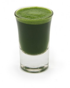 wheatgrass juice recipes, recipes for wheat grass juice, using wheat grass juice,